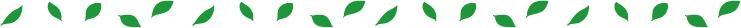 葉っぱ罫線(濃い緑)