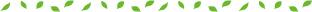 長めの葉っぱの罫線(うす緑S)